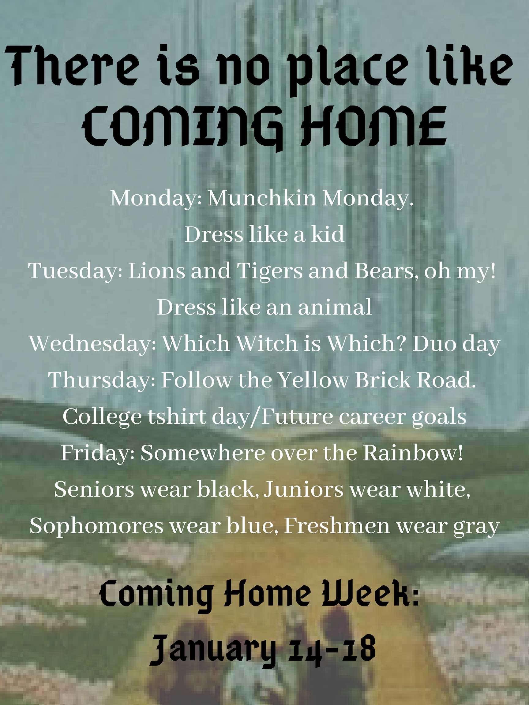 Coming Home Dress Up Days